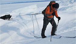 Волокуши из лыж